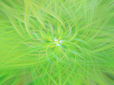 pattern nature floral glow smooth fractal illustration. background scientific.