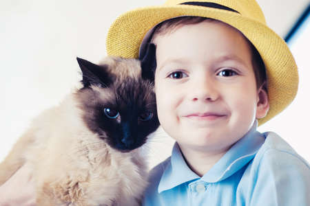 cat child balinese together play kid happy. friendship companion. Stock Photo