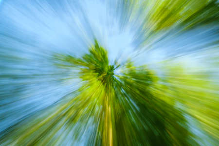 Abstract green background of tree in countryside outdoors. Zoom speed blured motion. Created by zooming out. Banco de Imagens - 122599989