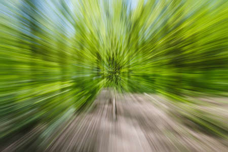Abstract green background of tree in countryside outdoors. Zoom speed blured motion. Created by zooming out. Stok Fotoğraf - 122599995