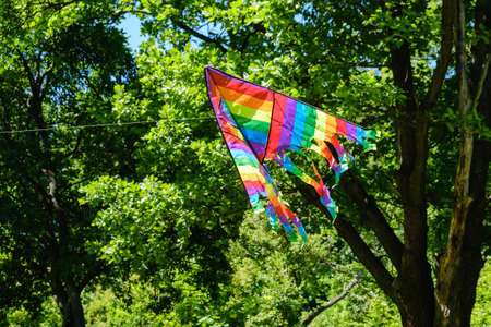 Kite flying against tree green air summer background, white wind. Stock Photo