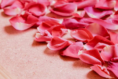 Red rose petals on wooden background, romantic floral concept
