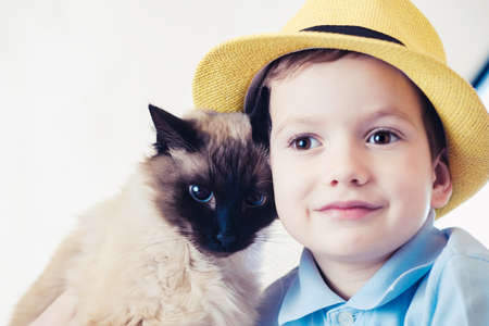 cat child balinese together play kid happy. friendship care. Stok Fotoğraf