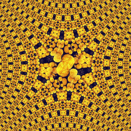 fractal pattern background abstract wallpaper design art. texture dynamic. Stok Fotoğraf