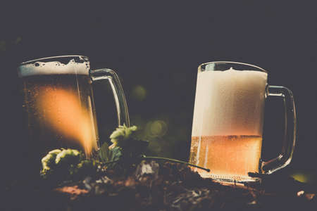 Two mugs of light beer with hop against background of green park trees outdoor picnic, outing party rest on nature. Stockfoto