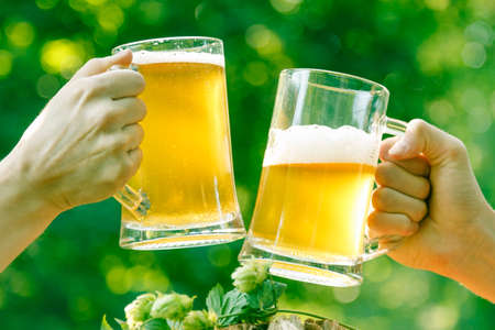Two mugs of light beer in hands with hop against background of green park trees outdoor picnic, outing party rest on nature.
