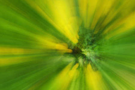 Abstract green bloom yellow dandelion flower of tree background of tree in countryside outdoors. Zoom blossom speed blured motion. Created by zooming out. Stok Fotoğraf