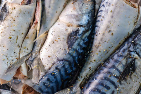 Mackerel fish seafood healthy food cooking in foil, dinner.
