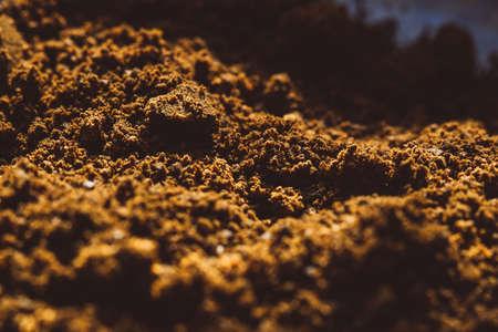 ground aromatic fragrant coffee texture macro beans background