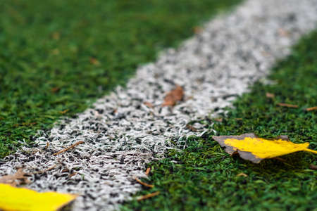 fall Autumn Soccer field with grass green, football artificial lawn. stadium