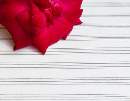sheetmusic: red rose on blank sheet music