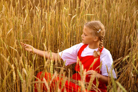 A young girl in a red dress sits on a wheat field 免版税图像