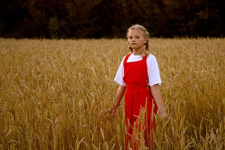 A girl in a red dress walks in a wheat field 免版税图像