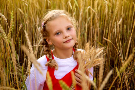 Young girl with blond hair in a wheat field