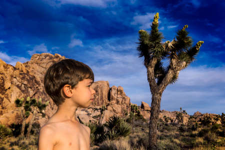 yucca: Boy in profile with a Yucca in Joshua Tree, mountains in the back.
