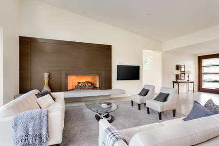 nobody real: large, expansive living room in luxury home with fireplace, tv, and couches