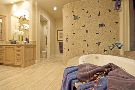 luxury home: master bathroom in newly constructed luxury home