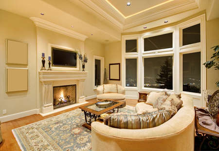 Living Room Interior in New Luxury Home with Fireplace, Rug, Tray Ceiling, and Elegant Features