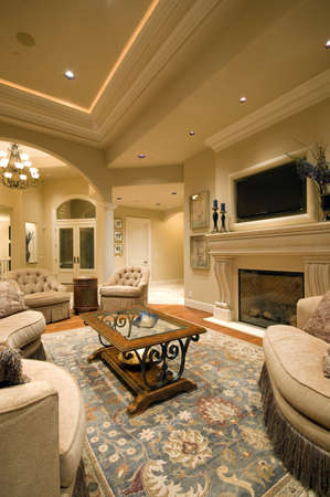 furnished: Living Room Interior in New Luxury Home with Fireplace, Rug, Tray Ceiling, and Elegant Features