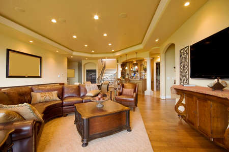 furnished apartments: Furnished living room in luxury home Stock Photo