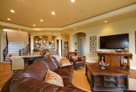 Furnished living room in luxury home 写真素材