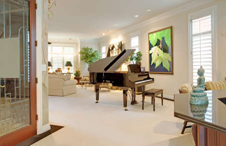 hearth and home: living room interior in new luxury home Stock Photo