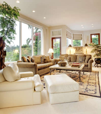 living room sofa: living room interior in new luxury home Stock Photo