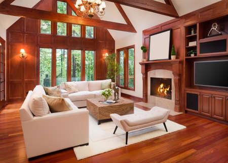 美しいリビング ルームは、堅木張りの床と新しい高級住宅に暖炉のある間します。テレビとアーチ型の天井ビルトインが含まれています。 写真素材