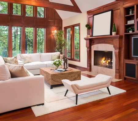 the vaulted: Beautiful living room interior with hardwood floors and fireplace in new luxury home. Includes built-ins with television and vaulted ceilings.