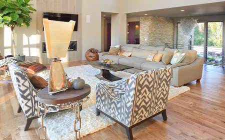 luxury home: Living Room Interior in New Luxury Home