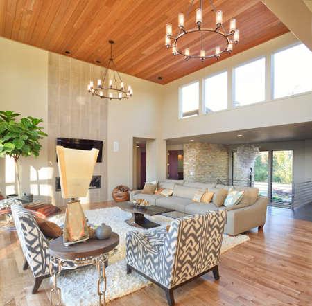 luxury room: Living Room Interior in New Luxury Home
