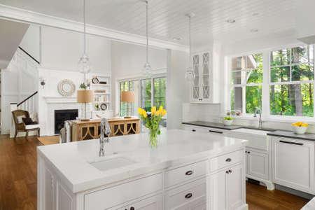 Schöne Küche Interieur mit Insel, zwei Waschbecken, Parkettböden, und Blick auf Wohnzimmer mit gewölbten Decken Standard-Bild - 61045797