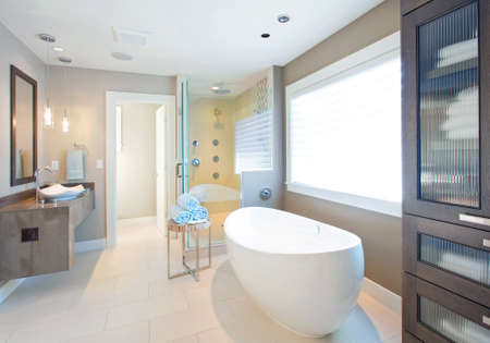 master: master bathroom in newly constructed luxury home