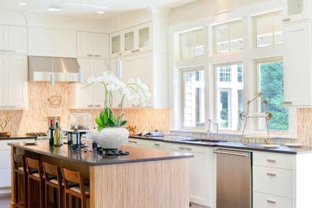 beautiful furnished kitchen in newly constructed luxury home