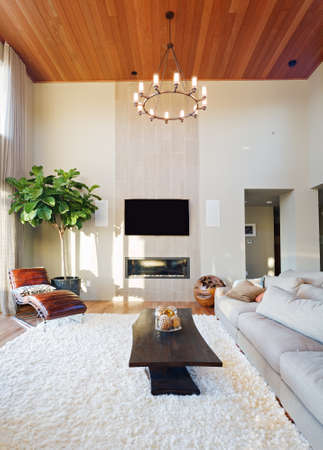 living room with vaulted ceilings in new luxury home Banco de Imagens