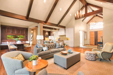luxury room: Furnished living Room in Luxury Home Stock Photo