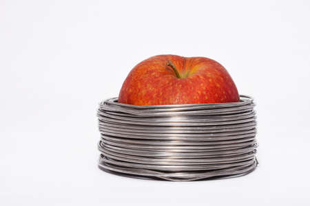 constrained: Wired apple: whole red apple in coils of aluminum wire isolated on white background
