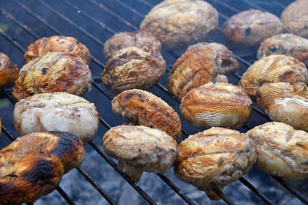 char: White champignons portobello mushrooms being cooked on char grill