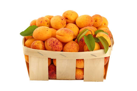 mellow: Ripe mellow fresh apricots with green leaves in wooden wicker basket crate isolated on white background, close up, side view