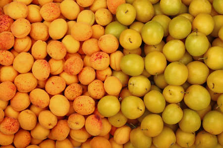 mellow: Fresh mellow yellow plums (cherry plums) and ripe apricots background pattern close up, top view Stock Photo