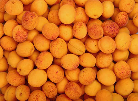 mellow: Fresh ripe mellow apricots background pattern close up, top view Stock Photo