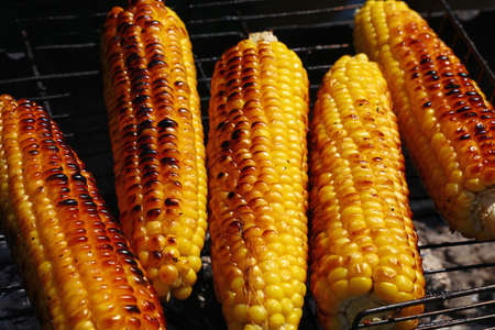 broil: Cooking several fresh yellow brown golden corn cobs on open air barbecue grill, close up Stock Photo