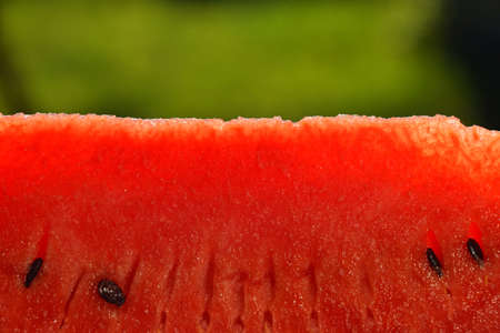 personal perspective: Detail close up translucent slice of fresh red juicy watermelon over natural green background, personal perspective Stock Photo