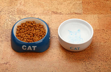 personal perspective: Brown dry cat food portion in blue ceramic bowl with cat word and water in white on wooden floor, close up, high angle view, personal perspective