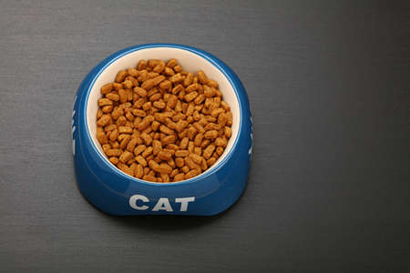 personal perspective: Brown dry cat food in blue and white ceramic bowl with cat word on black floor, close up, high angle view, personal perspective