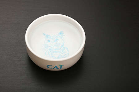 personal perspective: Drinking water portion for cat in white ceramic bowl with cat word and sketch on black floor, close up, high angle view, personal perspective