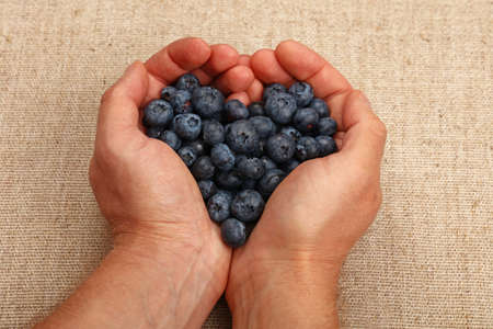 personal perspective: Two man hands with heart shaped palms holding handful of ripe blueberries over canvas, close up, high angle view, personal perspective