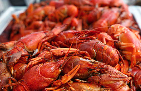 Heap of fresh cooked ready to eat red crawfish (crayfish) with claws in metal tray at retail display, close up, high angle front view