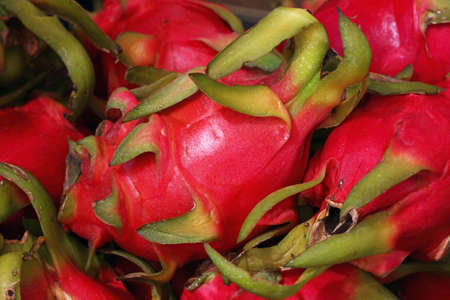 Close up several red ripe pitaya or white pitahaya dragon fruit on market stall, low angle side view Stock Photo