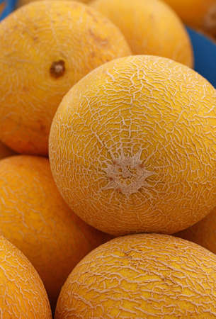 Close up whole fresh ripe summer yellow cantaloupe melons on retail display of farmers market, high angle view Stock Photo